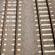 Railroad tracks — Photo
