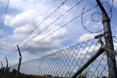 Lines of barbed wire — Stock Photo