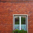 Stock Photo: Window on brick wall