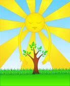 Sun loves nature — Stock Vector