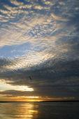 Golden Sunset on the beach — Stock Photo