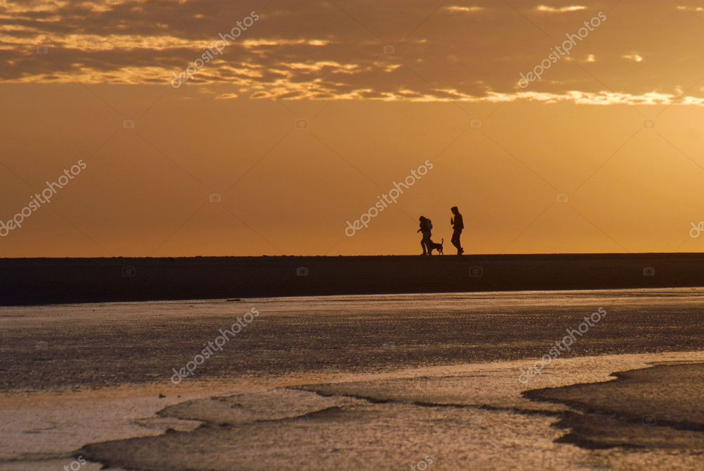 Human couple and dog walking. Beautiful seascape under golden sunrise. Montevideo, Uruguay.  Stock Photo #2427836