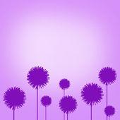 Flower outline — Stock Photo