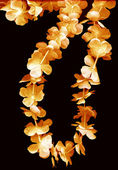 Flower leis — Foto de Stock