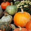 Pumpkin display - Stock Photo