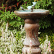 Stock Photo: Ornamental birdbath