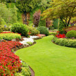 Lush garden in spring - Stock Photo