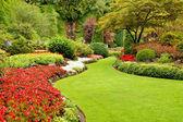 Grönskande trädgård under våren — Stockfoto