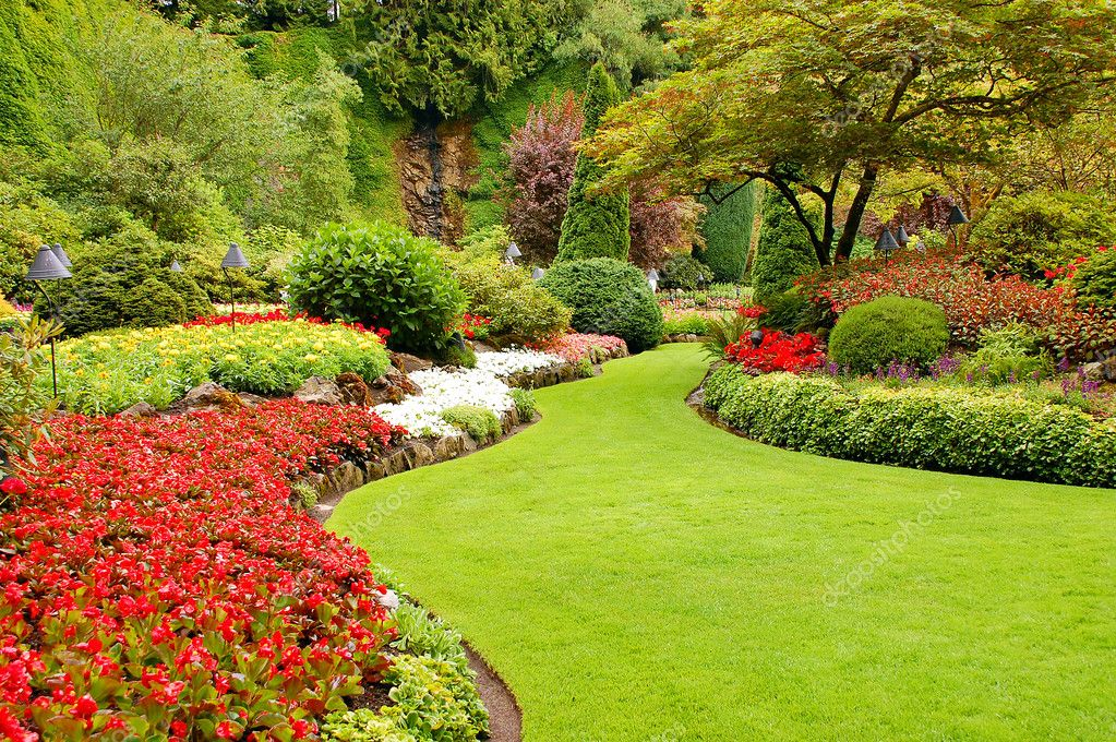 Colorful lush garden in springtime — Stock Photo #2019324