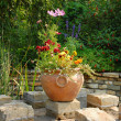 Garden patio — Stock Photo #2107949