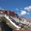 the potala palace — Stock Photo