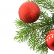 Christmas branch fur-tree with sphere tr - Stock Photo