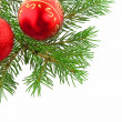 Stock Photo: Christmas green branch of fur-tree with