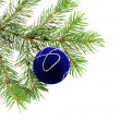 Christmas branch fur-tree with boll — Stock Photo #2025598
