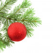 Christmas branch fur-tree with  red boll — Stock Photo