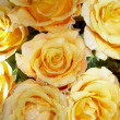 Rose bouquet — Stock Photo #2026695