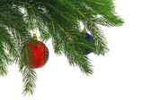 Christmas branch fur-tree with ball — Stock Photo