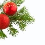 Kırmızı Top ile Noel şube köknar ağacı — Stok fotoğraf