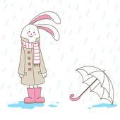 Hare in the rain — Stock Photo