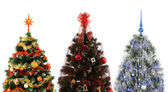 Three christmas trees — Stock Photo