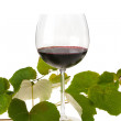 Stock Photo: Glass of Red Wine and Vine Leaves