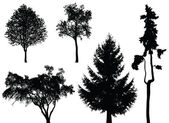 树木-矢量集 — 图库矢量图片