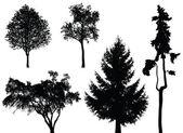 Trees - vector set — Stock Vector