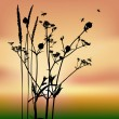 Set of vector grass silhouettes backgrou - Stock Vector