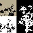 Collection for designers, plant vector — Image vectorielle