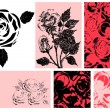 Vector illustration of roses. Design set — Imagens vectoriais em stock