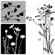 Real plants silhouette - vector set — Stok Vektör