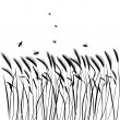 Set of vector grass silhouettes - Stock Vector