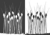 Set of vector grass silhouettes — Stock Vector