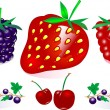 Vector Berry Collection - Stock Vector