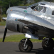 Stock Photo: Beech 18