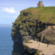 Cliffs of Moher — Stock Photo #2487282