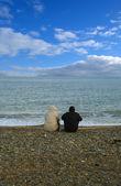 People on Bray beach — Photo