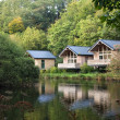 Forest cabins — Stock Photo
