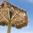 Under thatched umbrella — Stock Photo