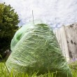 Green waste — Stock Photo #2054880