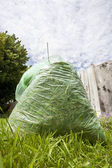 Green waste — Stock Photo