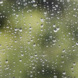 rain drops — Stock Photo