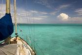 Acque tropicali — Foto Stock
