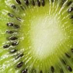 Abstract photo of a kiwi. — Stock Photo #2165809