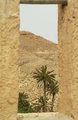 Desert2. — Foto de Stock