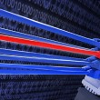 Network cables — Stock Photo