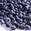 Bilberries on the white background — Stock Photo