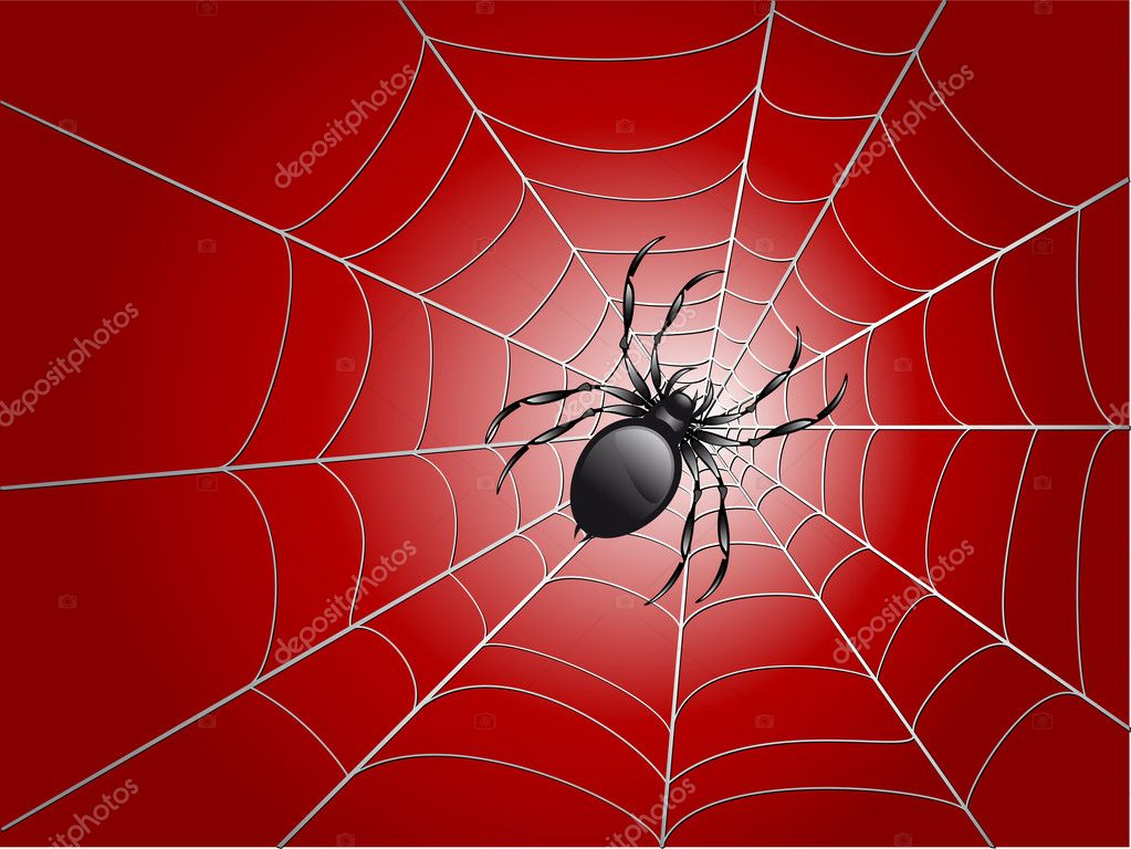 Black spider on wed vector illustration — Stock Vector #1955959