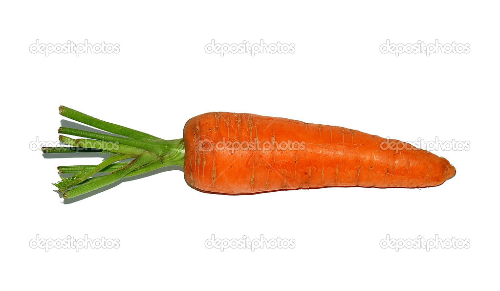Healthy vegetable carrot on white background — Stock Photo #2014969
