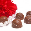 Chocolate and flower — Stock Photo